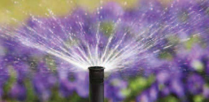 nawadnianie roślin i trawników